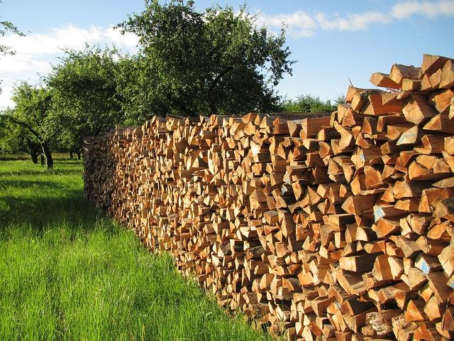 Ce lemne de foc folosim